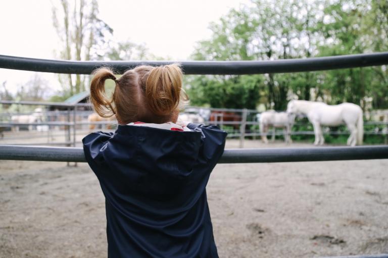 southlandfarms, pony rides, vancouver