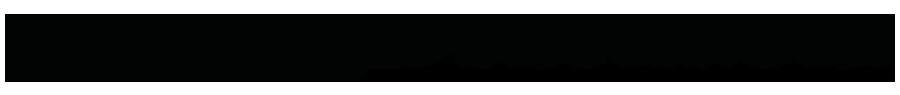 Lesley Stefanski logo